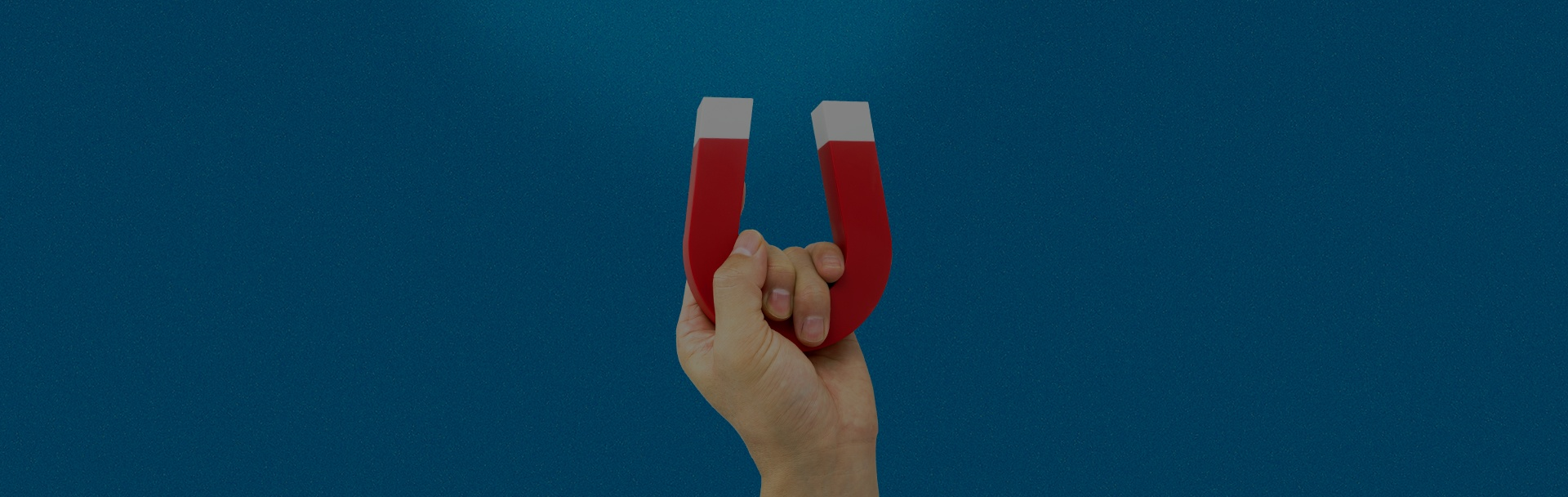 solucionweb-banner-blog-deja-que-los-leads-se-acercan-a-ti.jpg